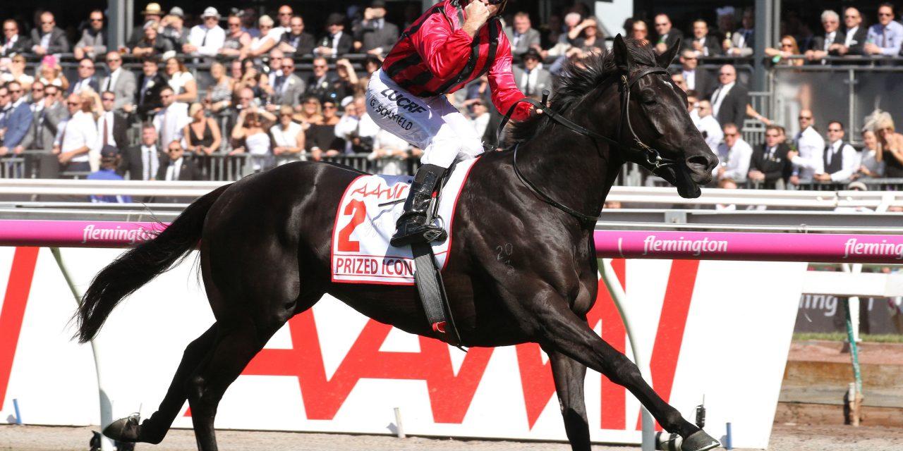 http://www.stallions.com.au/wp-content/uploads/2020/03/PRIZED-ICON1-1280x640.jpg