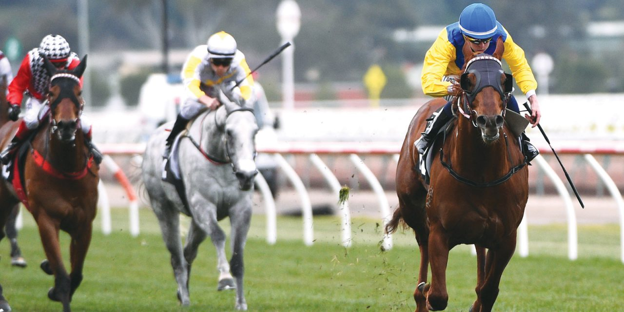 http://www.stallions.com.au/wp-content/uploads/2020/03/Sooboog-racing_2017-1280x640.jpg