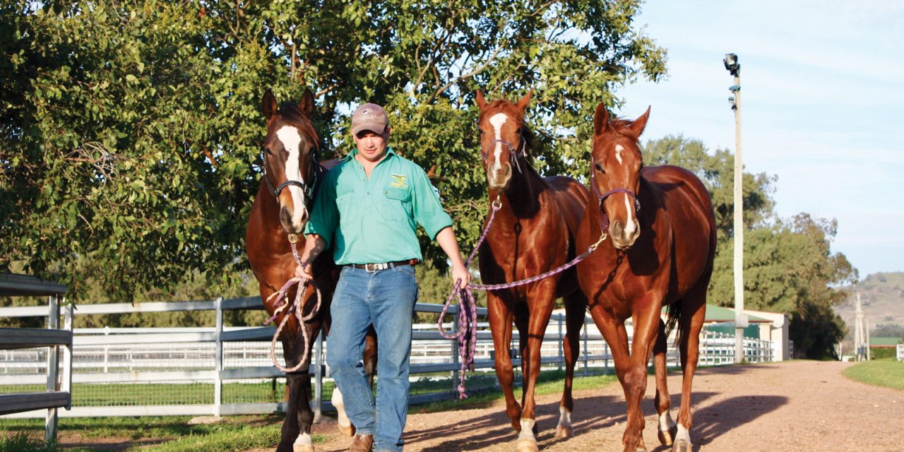 https://www.stallions.com.au/wp-content/uploads/2019/12/Turangga-1280x640.jpg