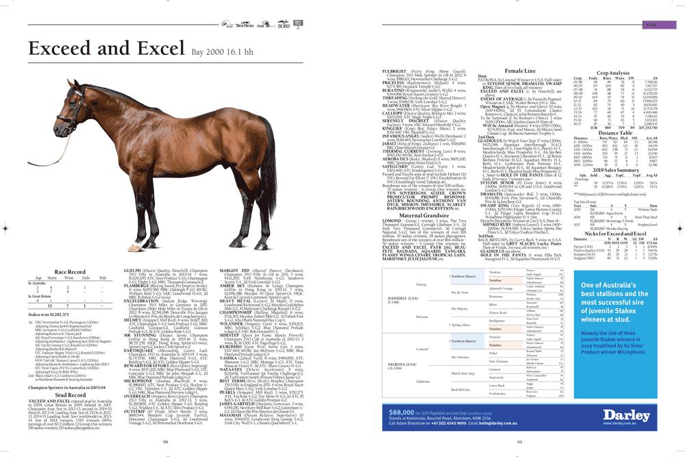 https://www.stallions.com.au/wp-content/uploads/2020/03/webblurb1.png