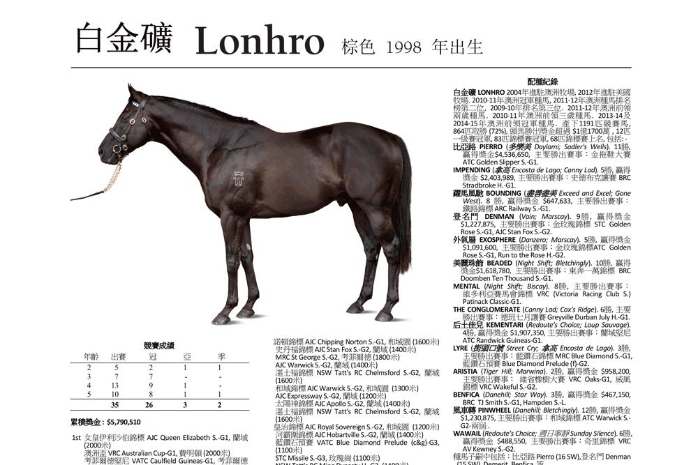 https://www.stallions.com.au/wp-content/uploads/2020/03/webblurb3.png