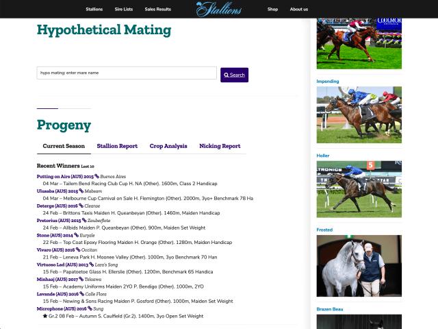 https://www.stallions.com.au/wp-content/uploads/2020/03/webmock4-640x480.png