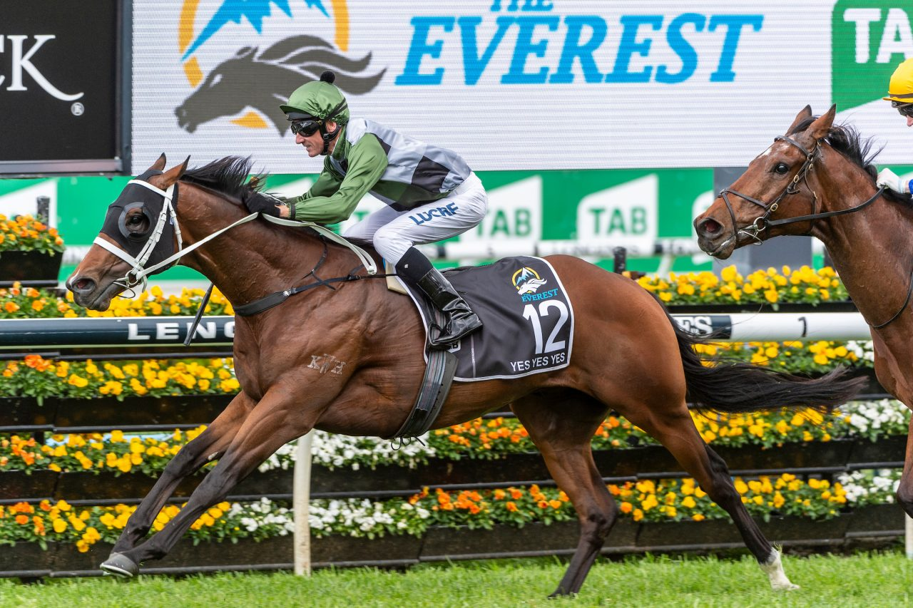 Yes Yes Yes (Rubick - Sin Sin Sin) ridden by Glen Boss wins the 2019 TAB Everest (1200m) at Royal Randwick.  19 October 2019  © The Image is Everything - Bronwen Healy & Darren Tindale Photography   Photo: Darren Tindale - The Image is Everything