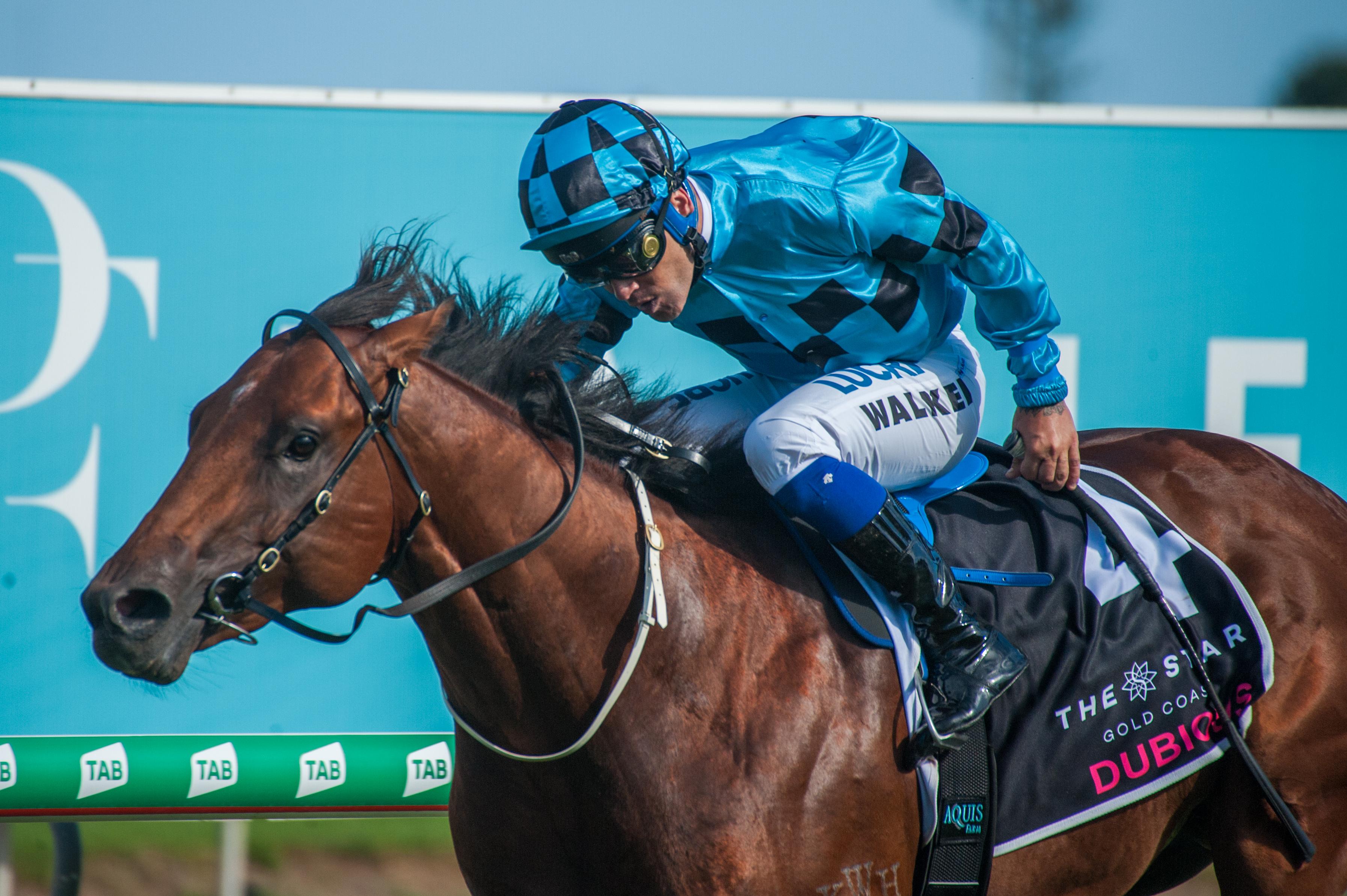 https://www.stallions.com.au/wp-content/uploads/2020/05/Race-8-Dubious-Michael-Walker_12-01-19-MM-Mark-Lee_0709.jpg