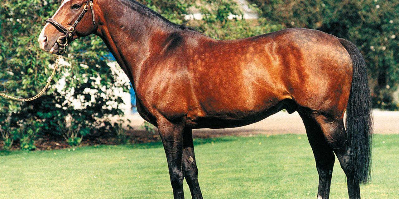 https://www.stallions.com.au/wp-content/uploads/2020/07/Sadlers-Wells-1280x640.jpg
