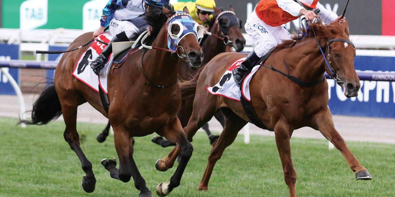 https://www.stallions.com.au/wp-content/uploads/2020/07/Vow-And-Declare_08-11-2018_WIN_Flemington_7__1373-1280x640.jpg