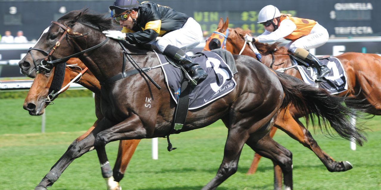 https://www.stallions.com.au/wp-content/uploads/2021/01/BETTER-THAN-READY-1-1280x640.jpg