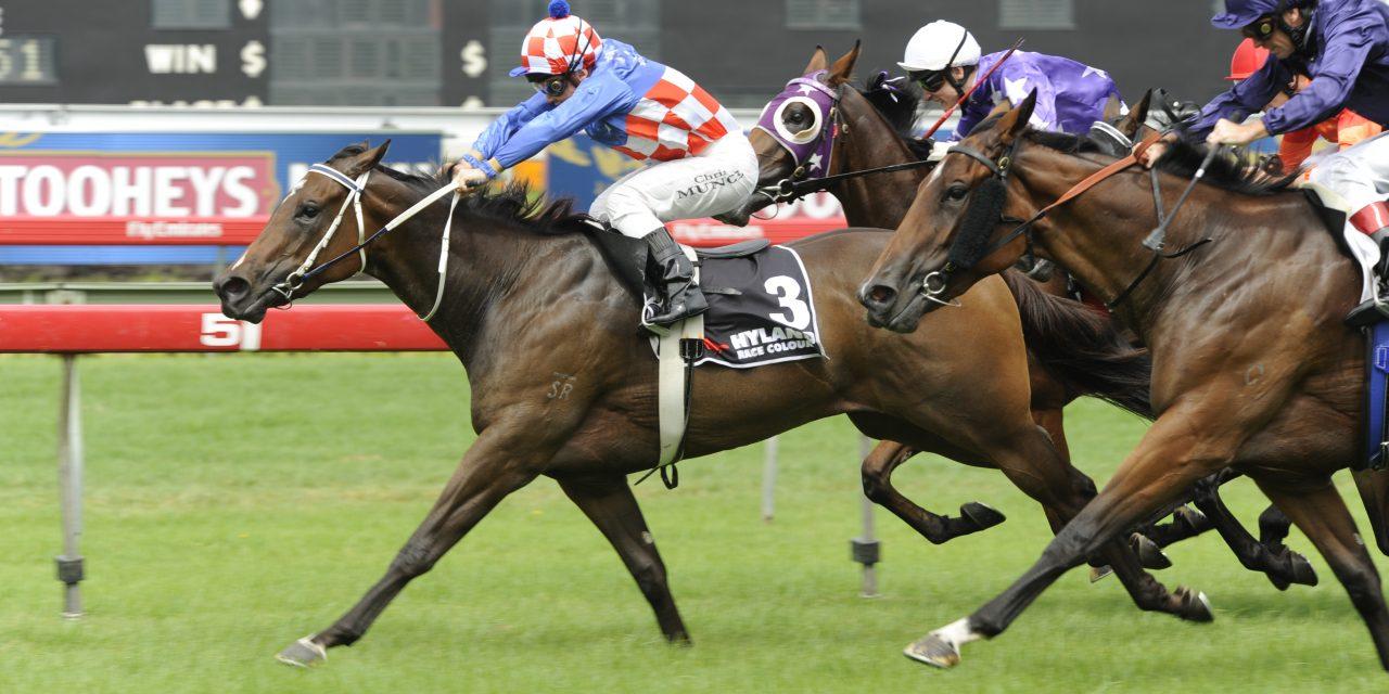 https://www.stallions.com.au/wp-content/uploads/2021/01/Headway_3_RW_140309_Z_B052-1280x640.jpg