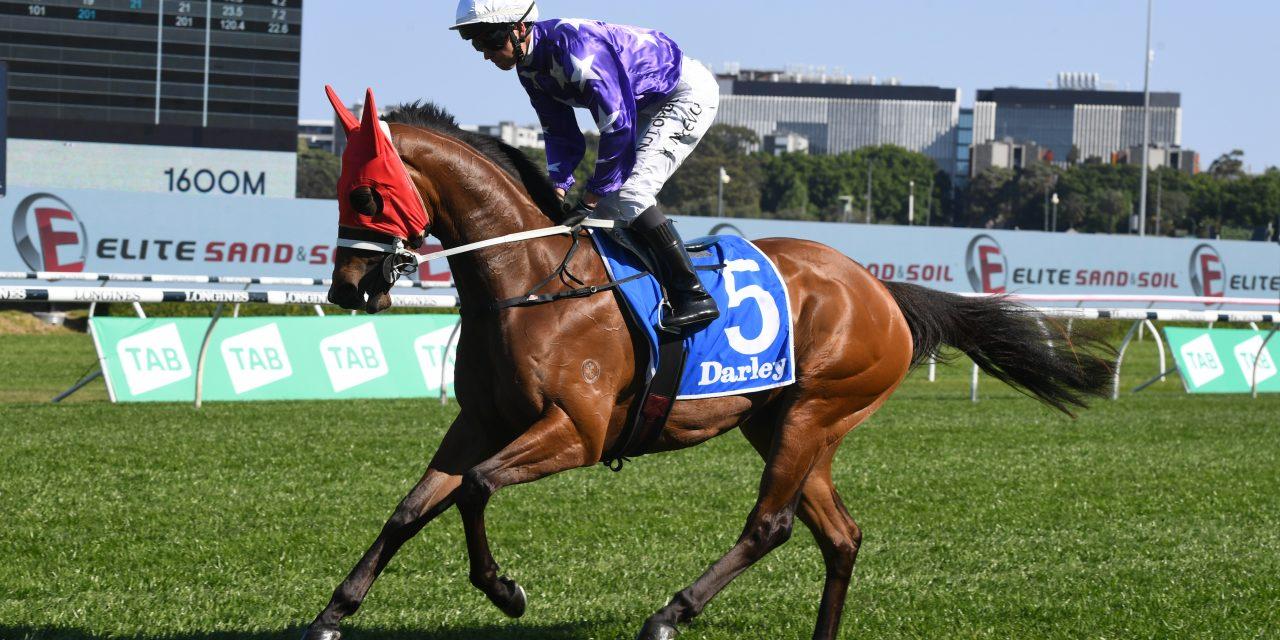 https://www.stallions.com.au/wp-content/uploads/2021/02/Joviality-Randwick-03102020-7382-1280x640.jpg