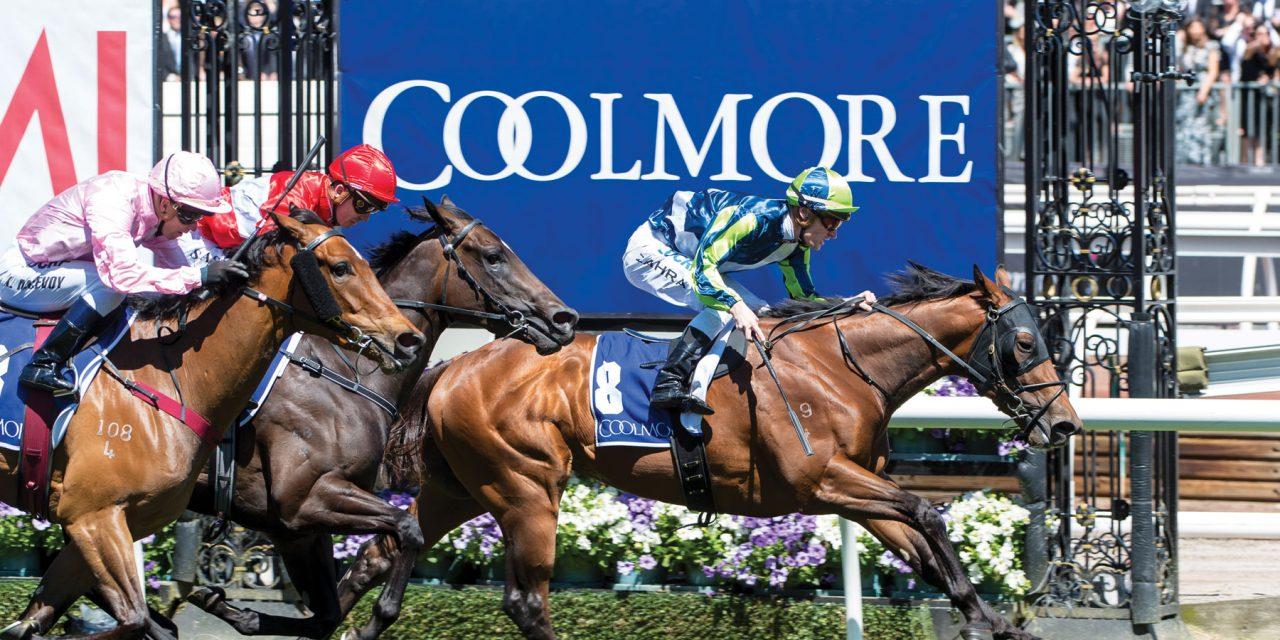 https://www.stallions.com.au/wp-content/uploads/2021/03/MerchantNavy-ZahraMark-11042017-4284-1280x640.jpg