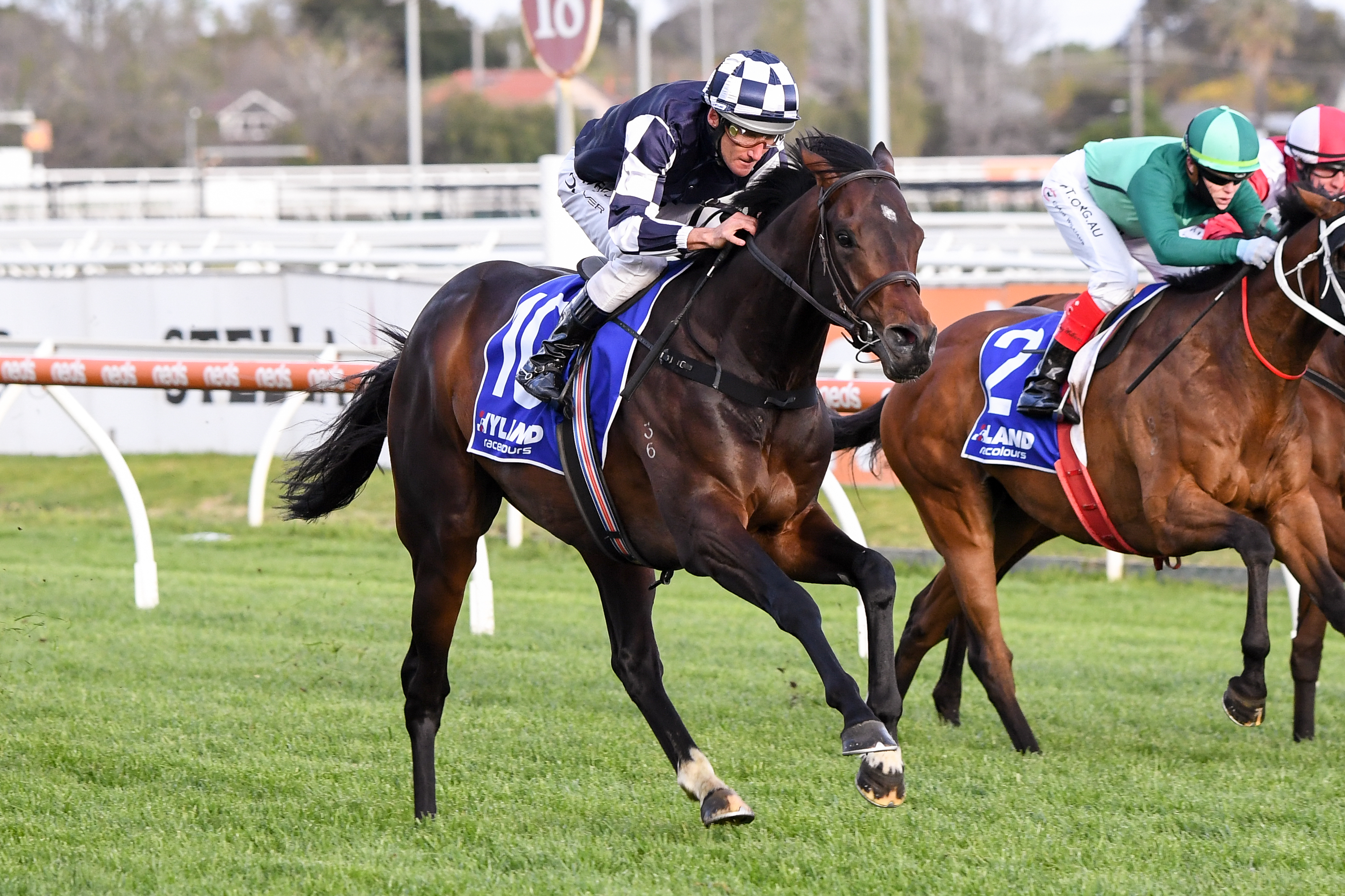 Russian Camelot (IRE) ridden by Damien Oliver wins the Hyland Race Colours Underwood Stakes  at Caulfield Racecourse on September 26, 2020 in Caulfield, Australia. (Pat Scala/Racing Photos)
