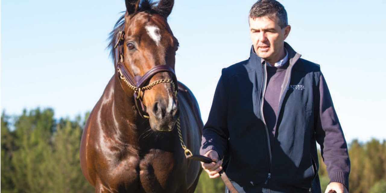 https://www.stallions.com.au/wp-content/uploads/2021/08/David-White-Casino-Prince-1280x640.jpg