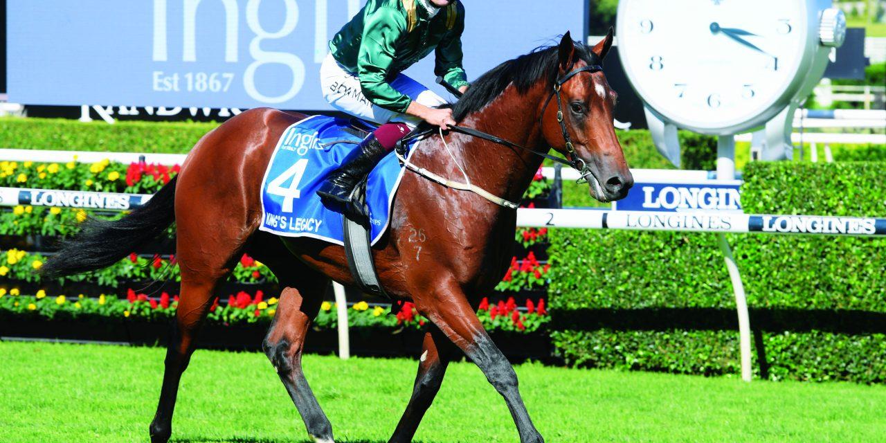 https://www.stallions.com.au/wp-content/uploads/2021/08/Kings-Legacy-Sires-1280x640.jpg