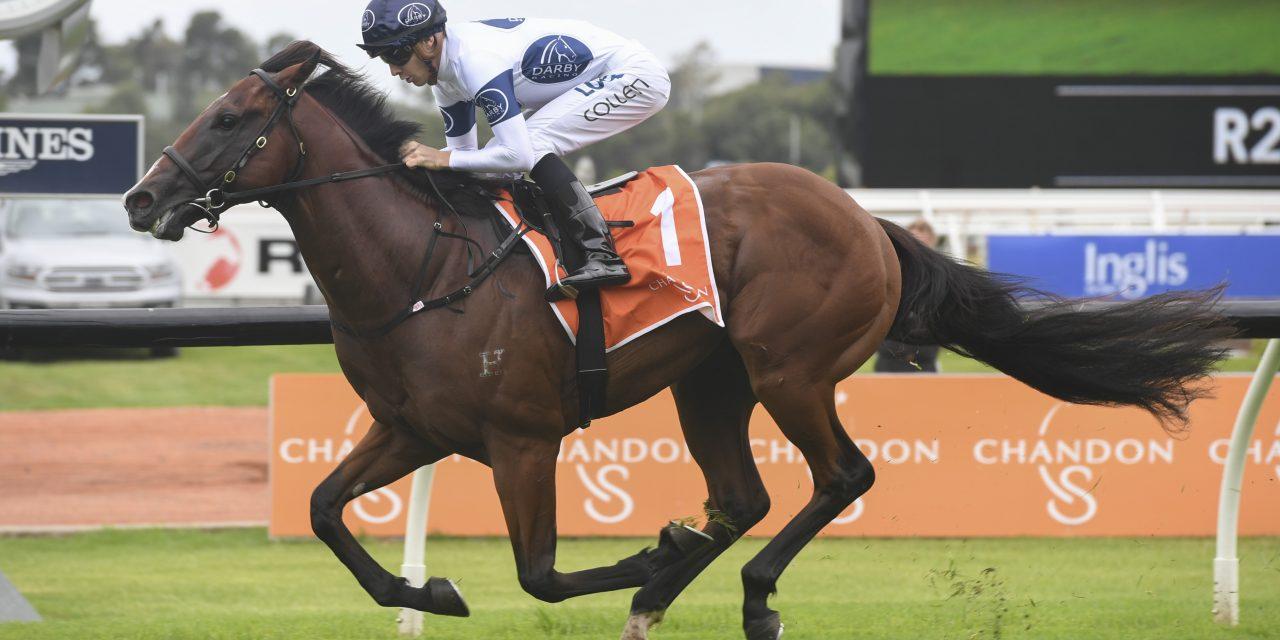 https://www.stallions.com.au/wp-content/uploads/2021/08/TIME-TO-REIGNZ_2_RH_23022019__B132-1280x640.jpg