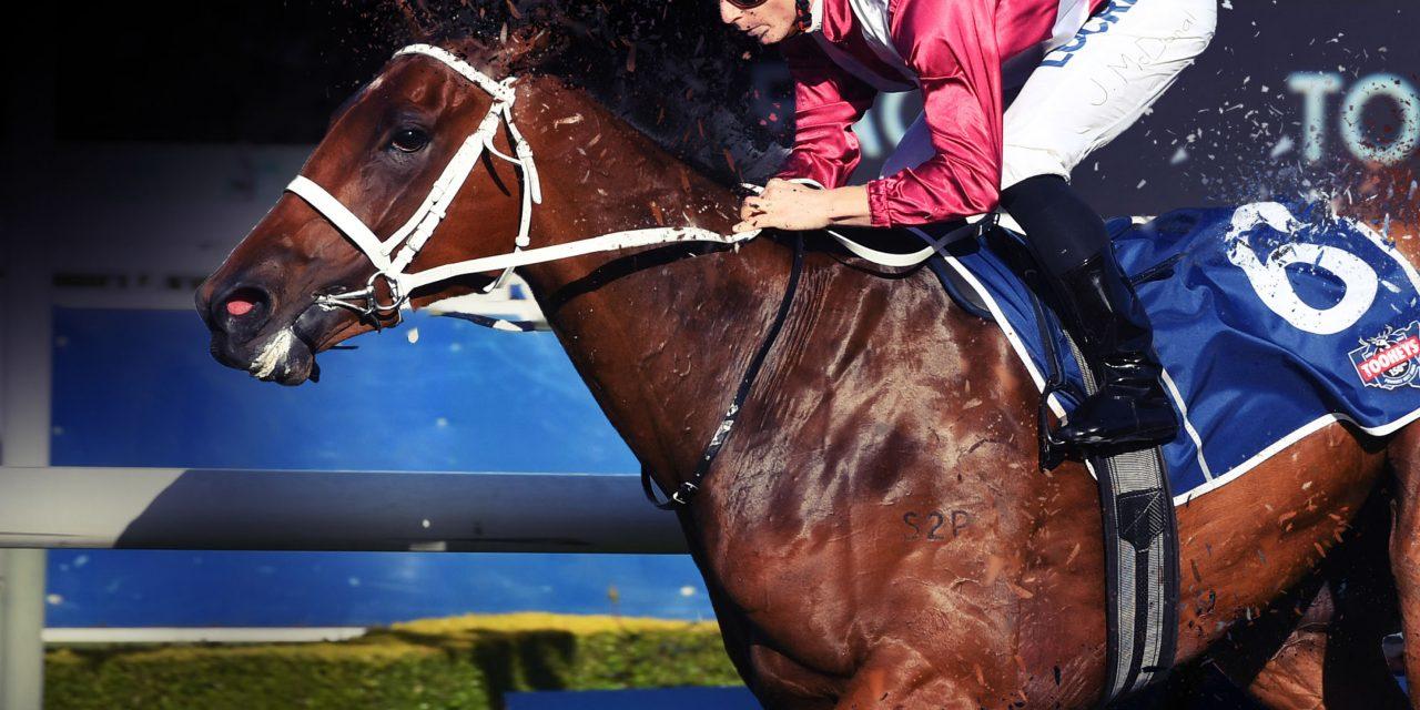 https://www.stallions.com.au/wp-content/uploads/2021/10/Battleofsexes-1280x640.jpg